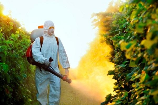 Защита растений 2