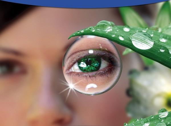 Глазки. Их основные заболевания и профилактика потери зрения