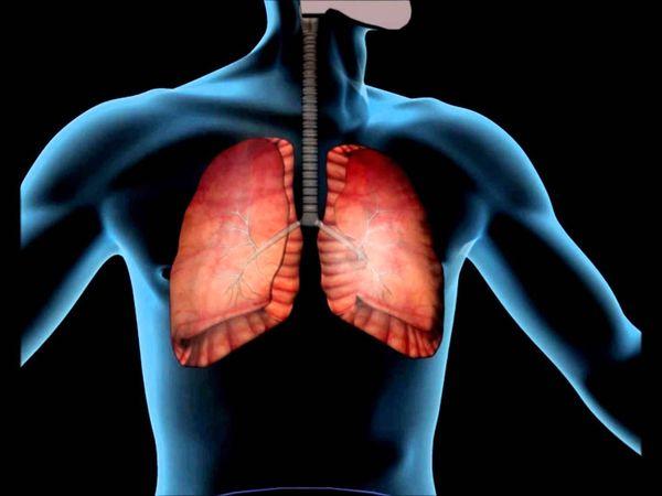 bolezni-dyxatelnoj-sistemy-2