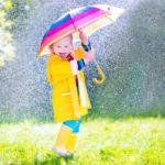 Рекомендации по выбору практичного и долговечного зонтика